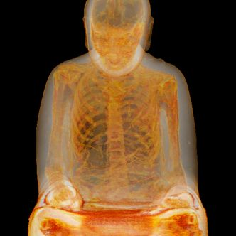 CT-Scan reveals mummified monk (possible self-mummification)